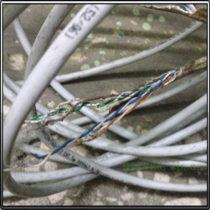 поврежденный крысами кабель