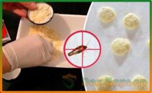 Народные методы борьбы с тараканами борной кислотой