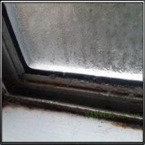 Пластиковое окно Грибок