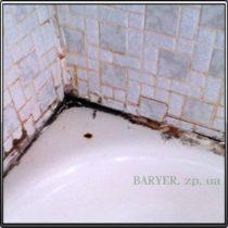 Грибок в углу ванны