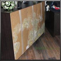 Грибок на стенке шкафа