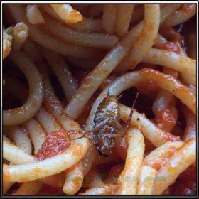 таракан в еде